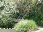 ОШО парк. Медитирующий Будда