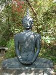 Медитирующий Будда вблизи